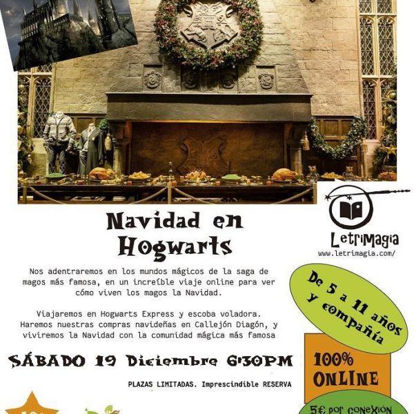 Acceso-Viaje-Hogwarts-Navidad-Liberespacio-Letrimagia1912